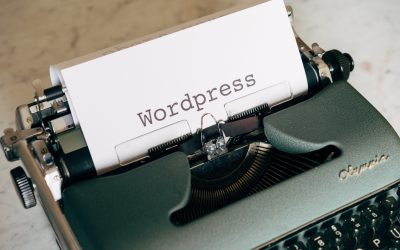 Difference Between WordPress Themes Free and Paid WordPress Themes